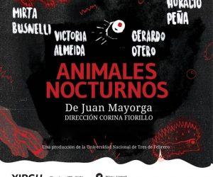 animales-nocturnos2